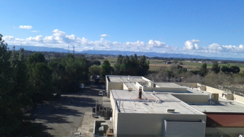 The view from the lab at UC Davis