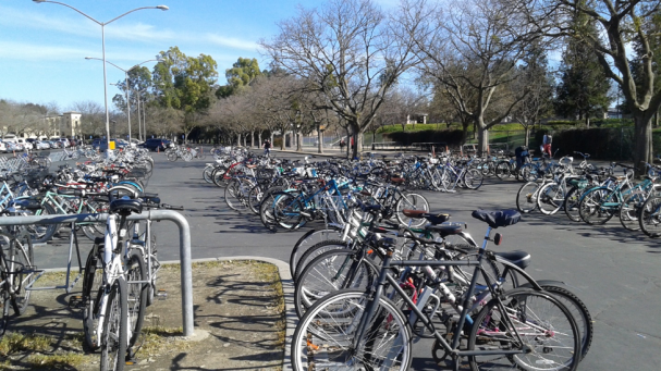 Lots of bikes on campus!